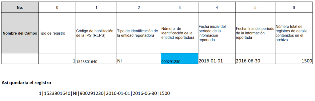 Registro tipo 1 Resolución 256 de 2016